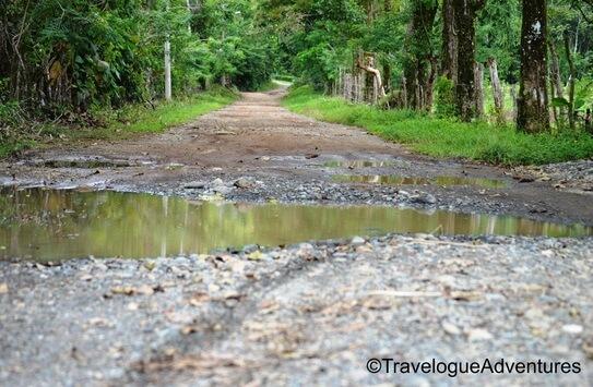 Rough dirt road in Costa Rica photo