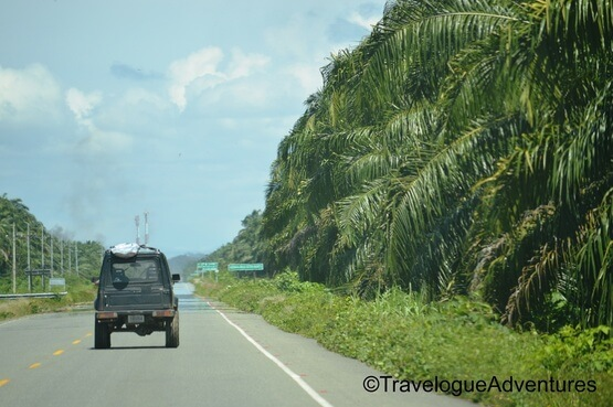 Highway in Costa Rica Picture