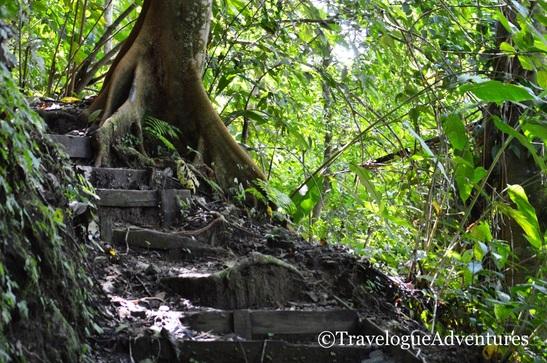 Trail Picture Hacienda Baru