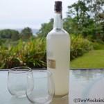 Vino de Coyol: Costa Rica's Moonshine?