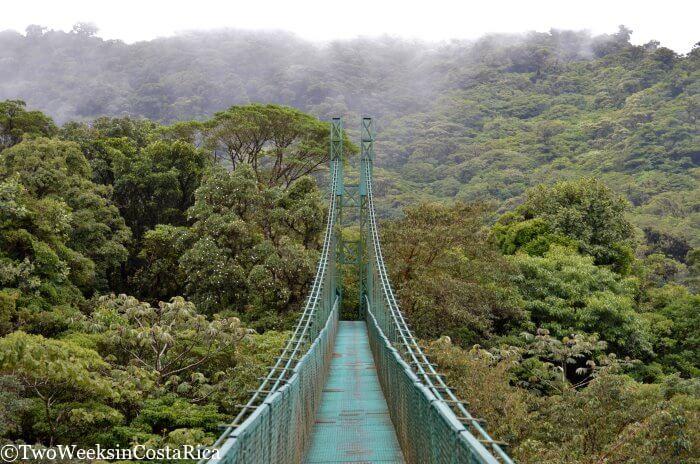Permalink to Hotel Costa Verde Costa Rica