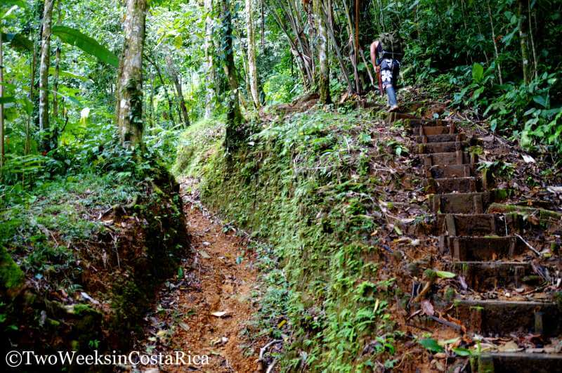Trail to Diamante Waterfall | Two Weeks in Costa Rica