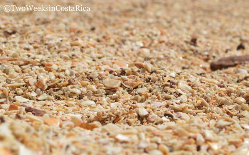 Seashell Beach, Playa Conchal | Two Weeks in Costa Rica