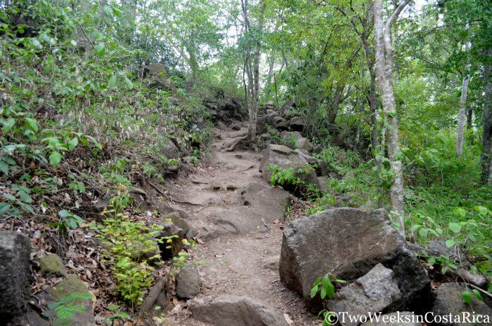 Llanos de Cortez Trail Conditions | Two Weeks in Costa Rica