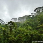 Braulio Carrillo National Park: Wild Jungle Near San Jose