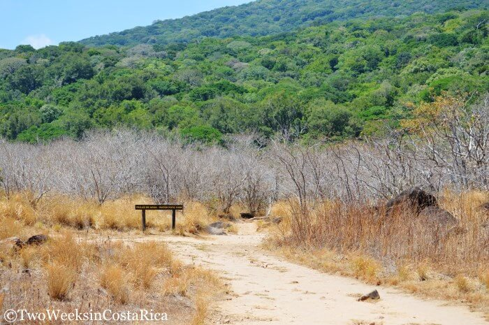 Rainforest meets the dry plains at Rincon de la Vieja | Two Weeks in Costa Rica