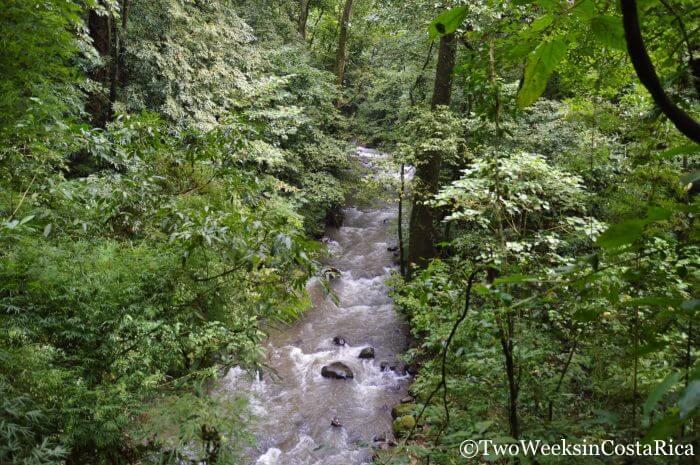 River at Los Chorros Waterfalls