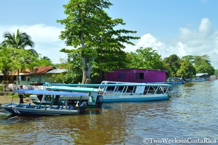 How Long Is San Jose Tortuguero In Car