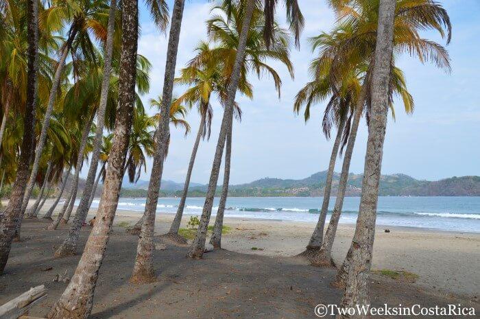 Samara Guanacaste S Most Overlooked Destination