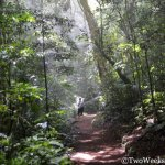 Curi-Cancha Reserve: Avoiding the Crowds in Monteverde