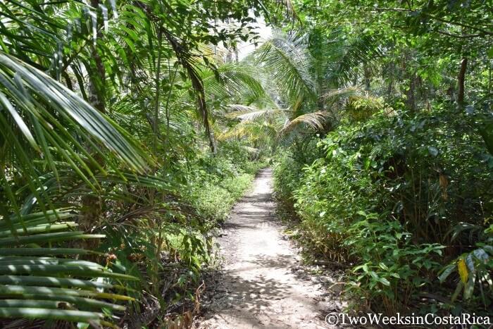 Cahuita National Park in Costa Rica